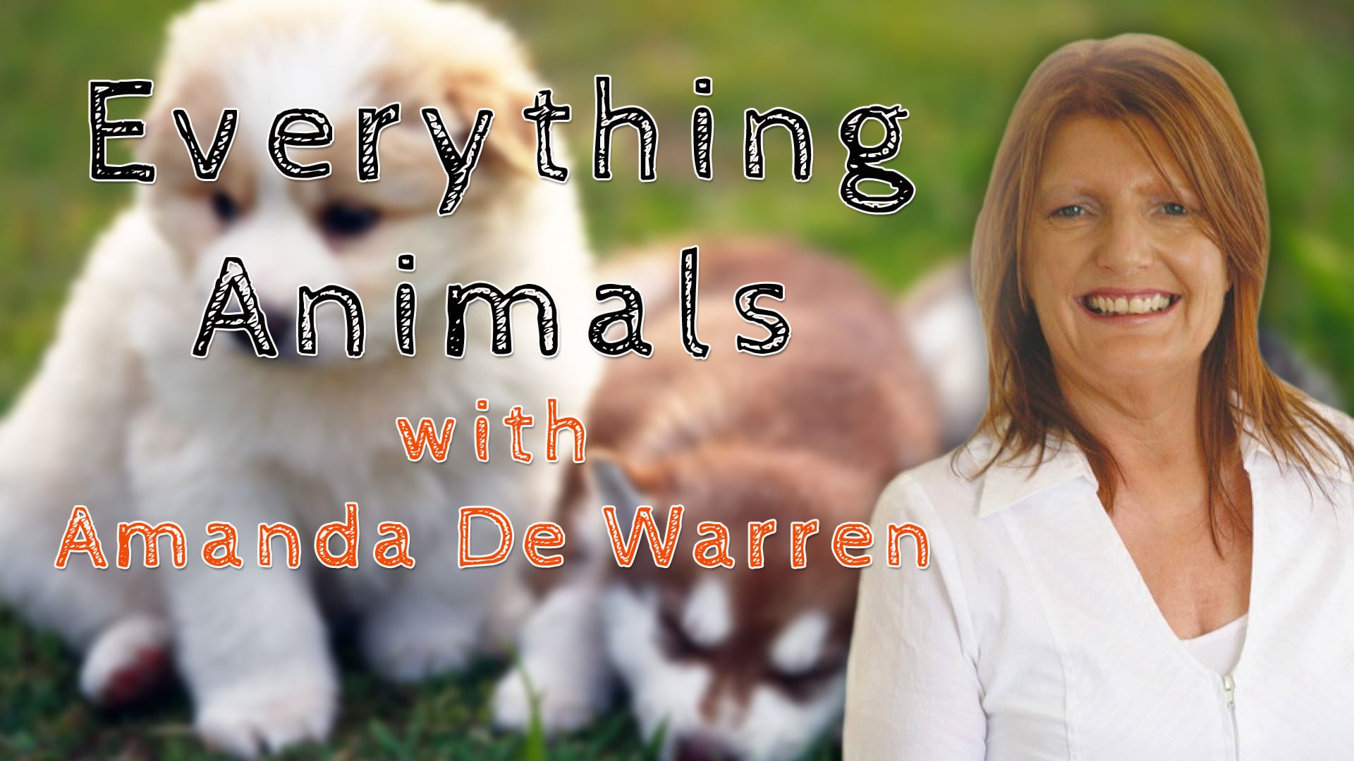Everything Animals
