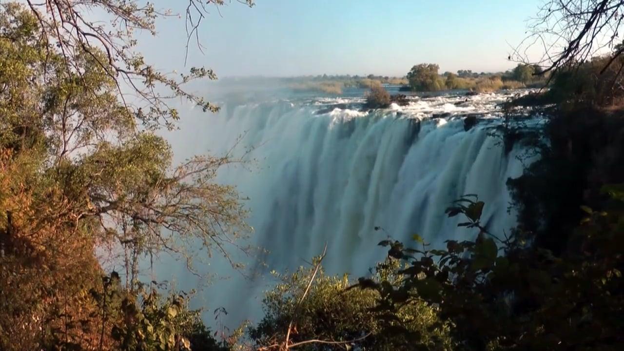 Trading stories Zambia