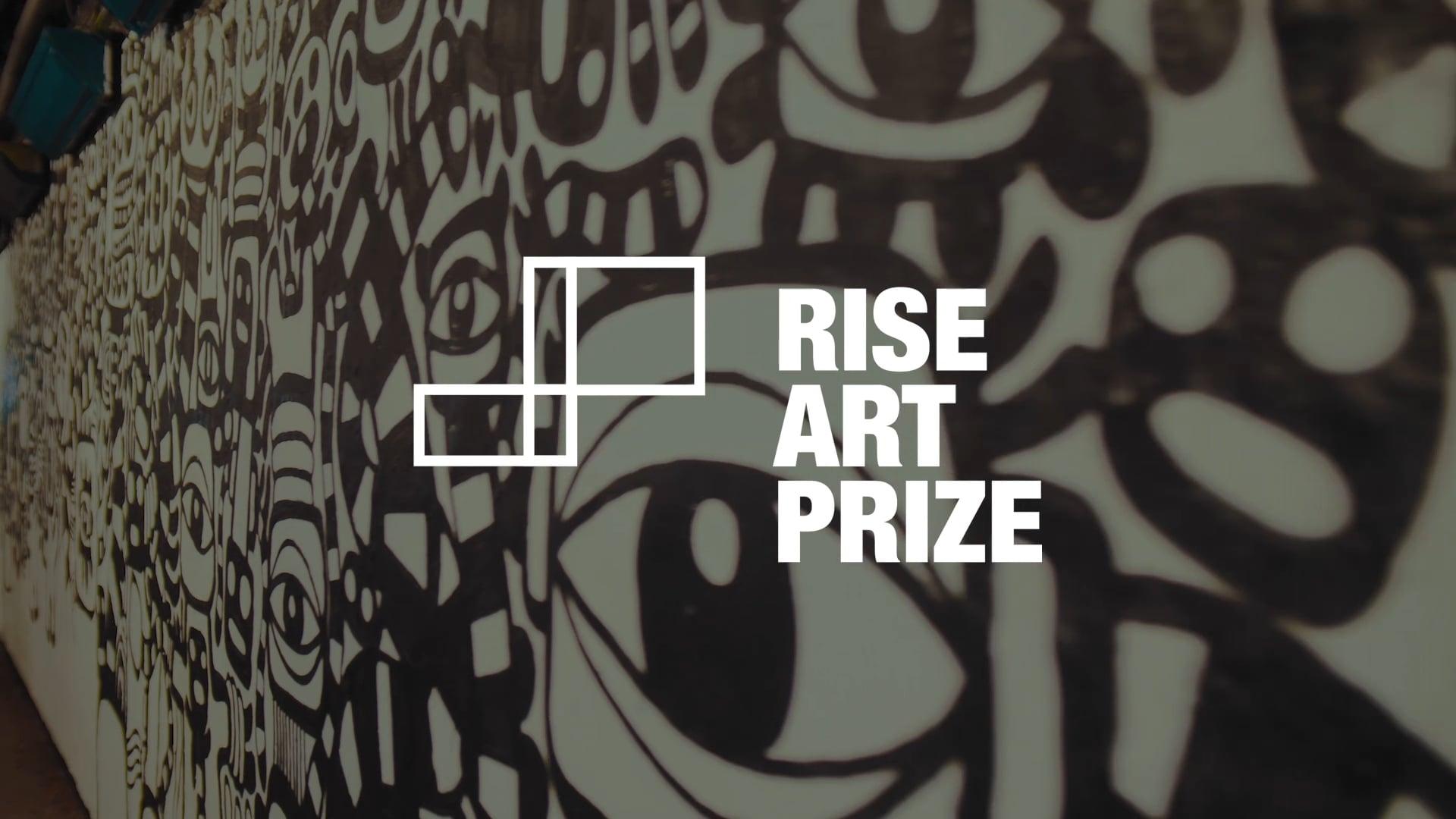 2018 Rise Art Prize Awards