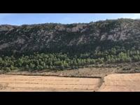 Sacred trunk -  Hondón de las Nieves