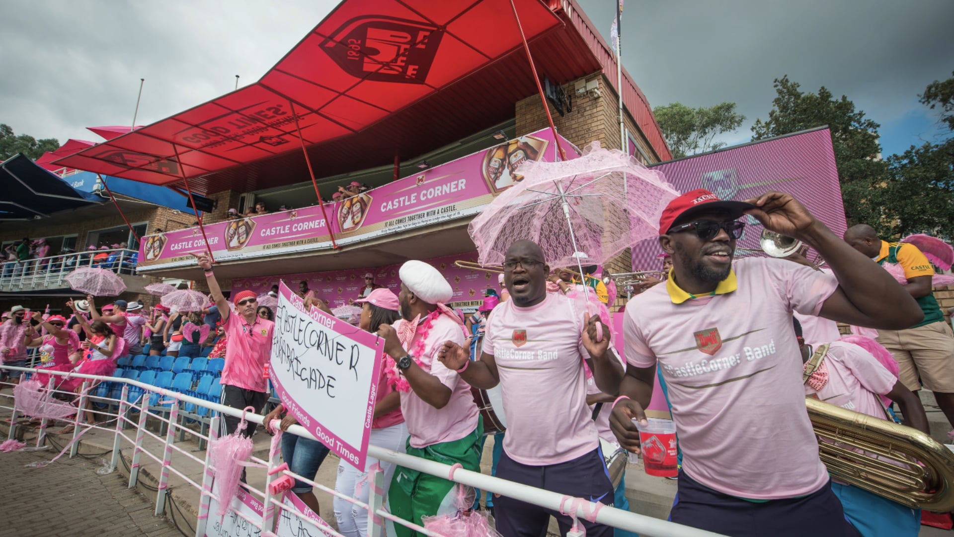 PROTEAS PITCH UP IN PINK SCRIPT 2