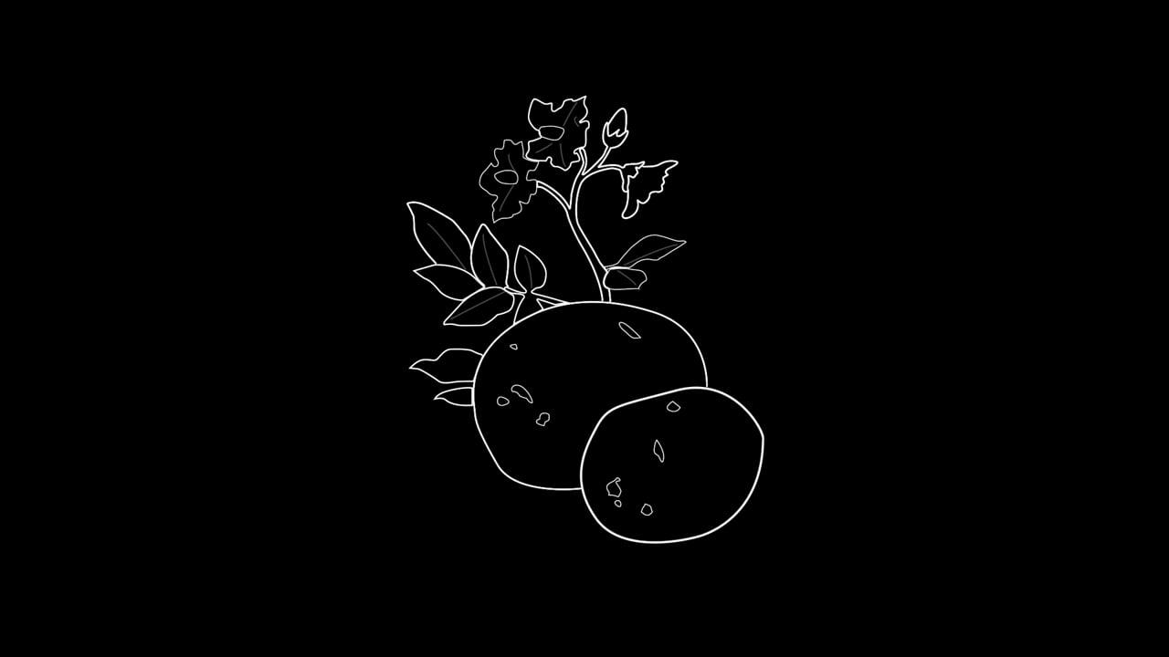 Aardappelen animation