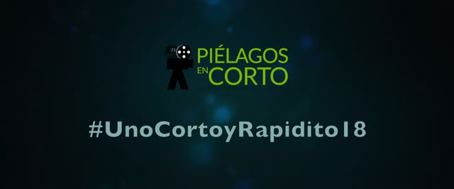 UNO CORTO Y RAPIDITO 2018 AVANCE Nº 1