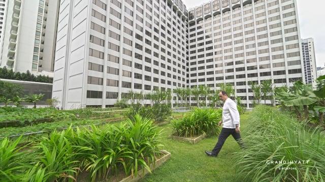 Grand Hyatt Singapore - Waste Management