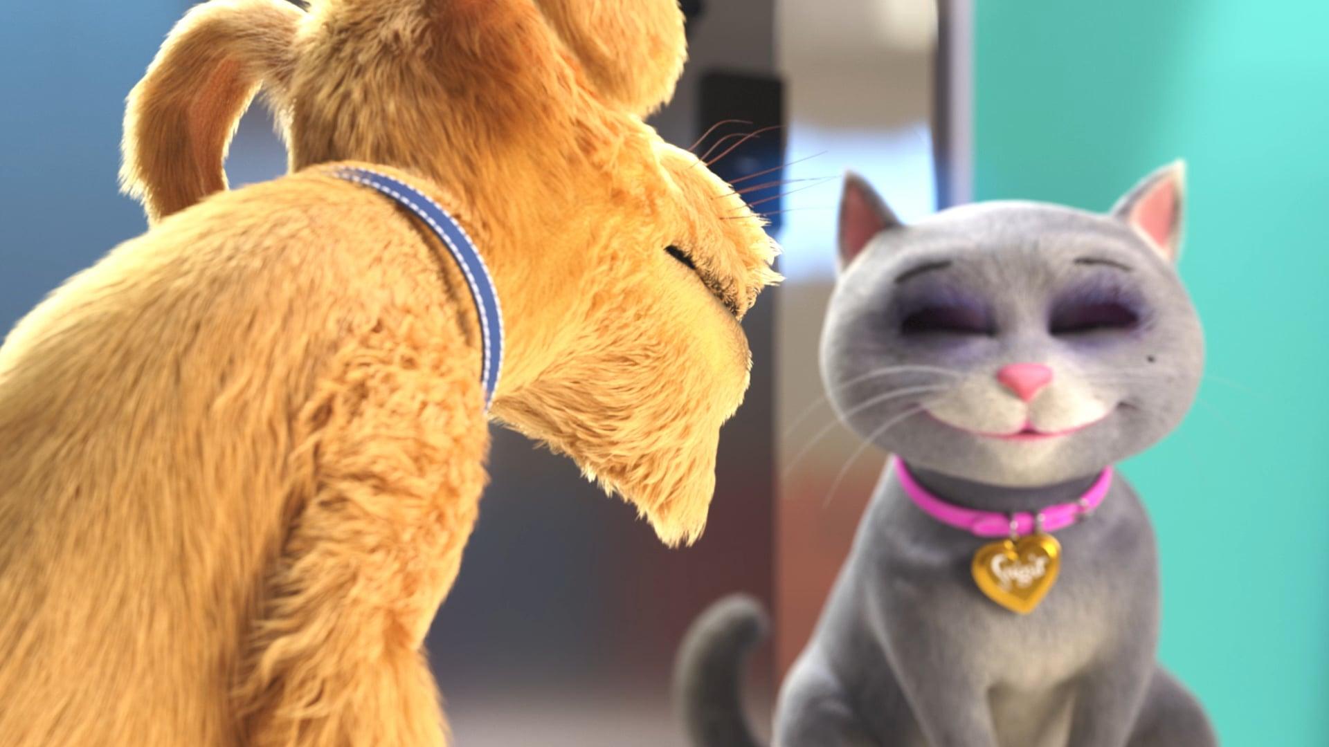 Sugar & Spike - Visit the vet