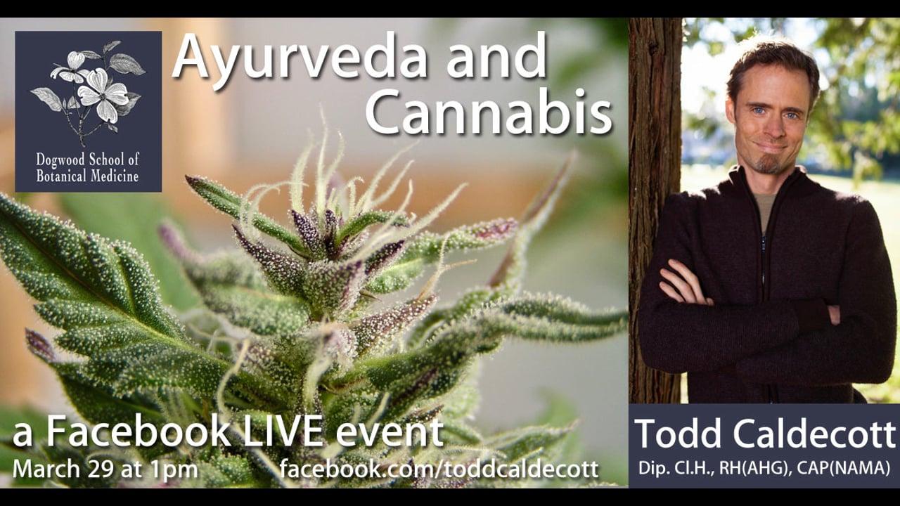 Ayurveda and Cannabis