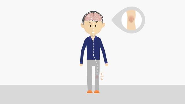 Grip op klachten - Hersenen