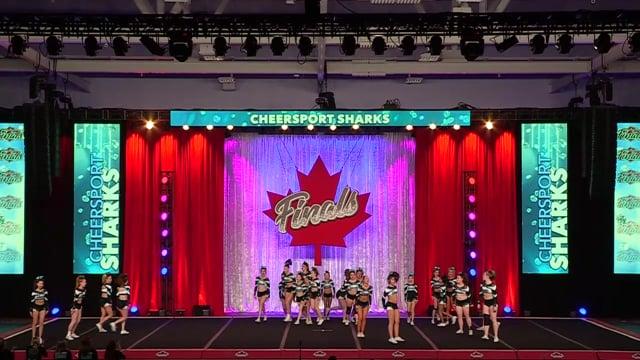 Cheer Sport Hammerhead Sharks Sr Med 4.2 - Canadian Finals