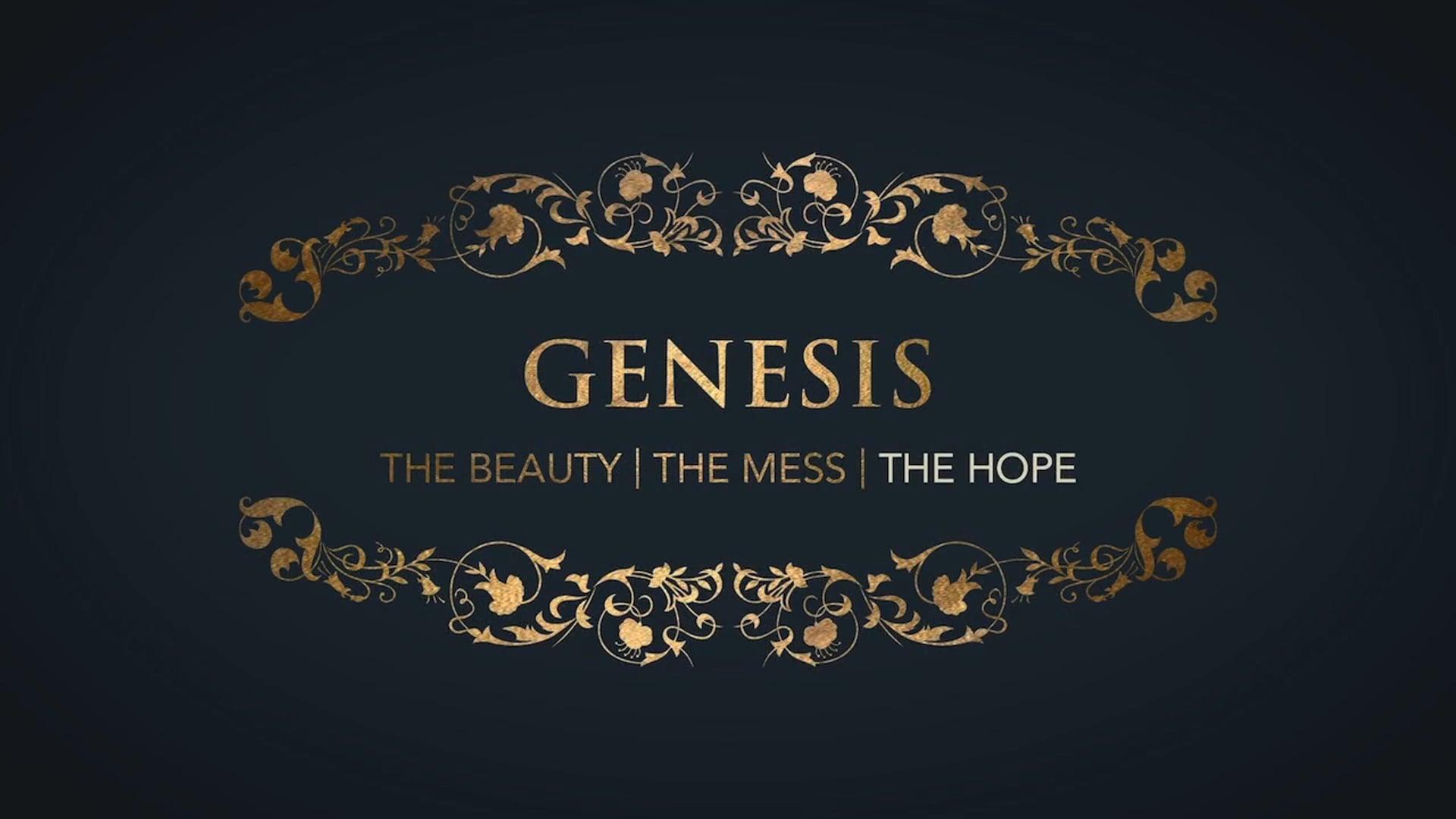 Week 2: Genesis: Hope in the God who Sees