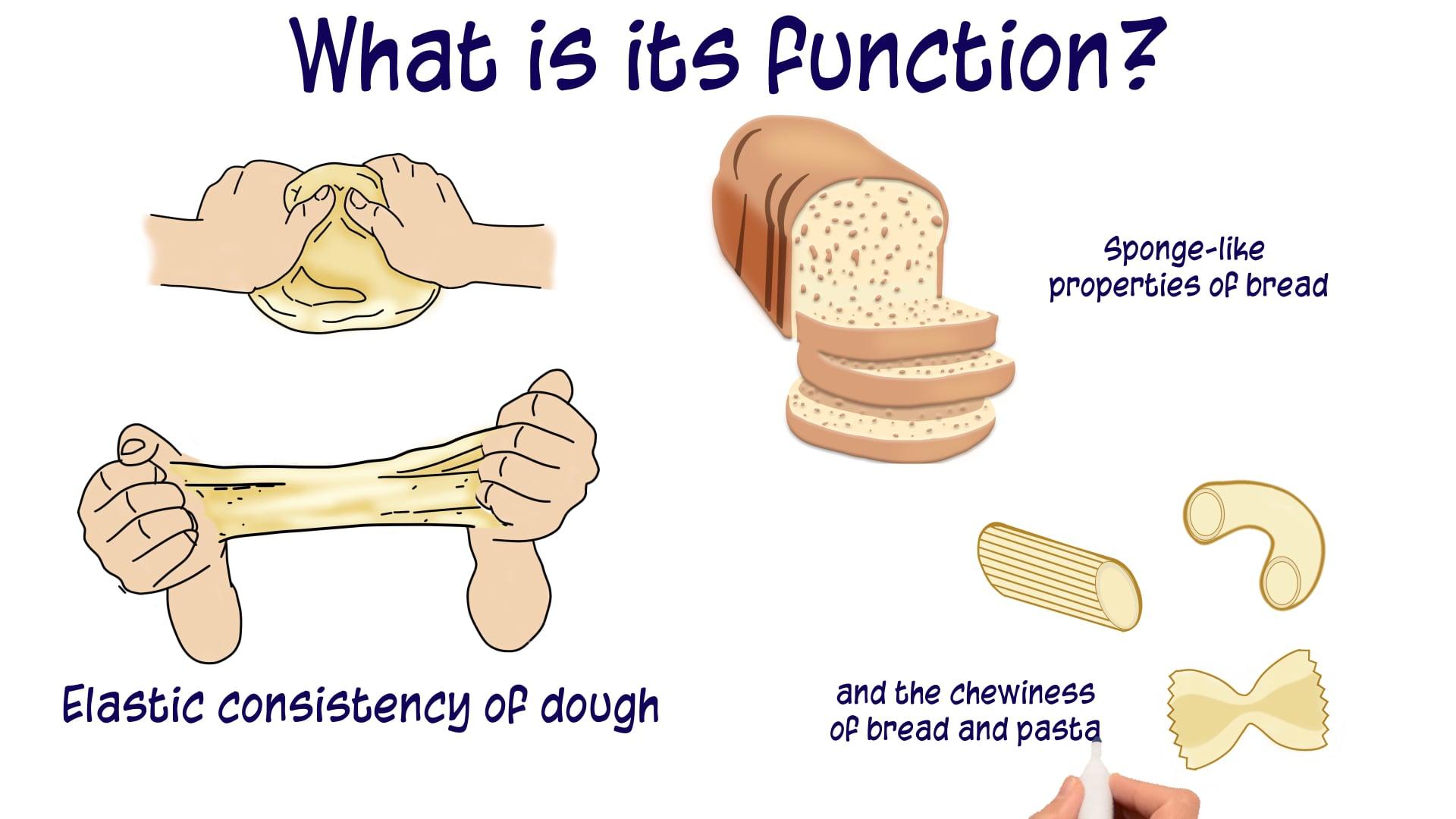 Gluten: is it as bad as it sounds?