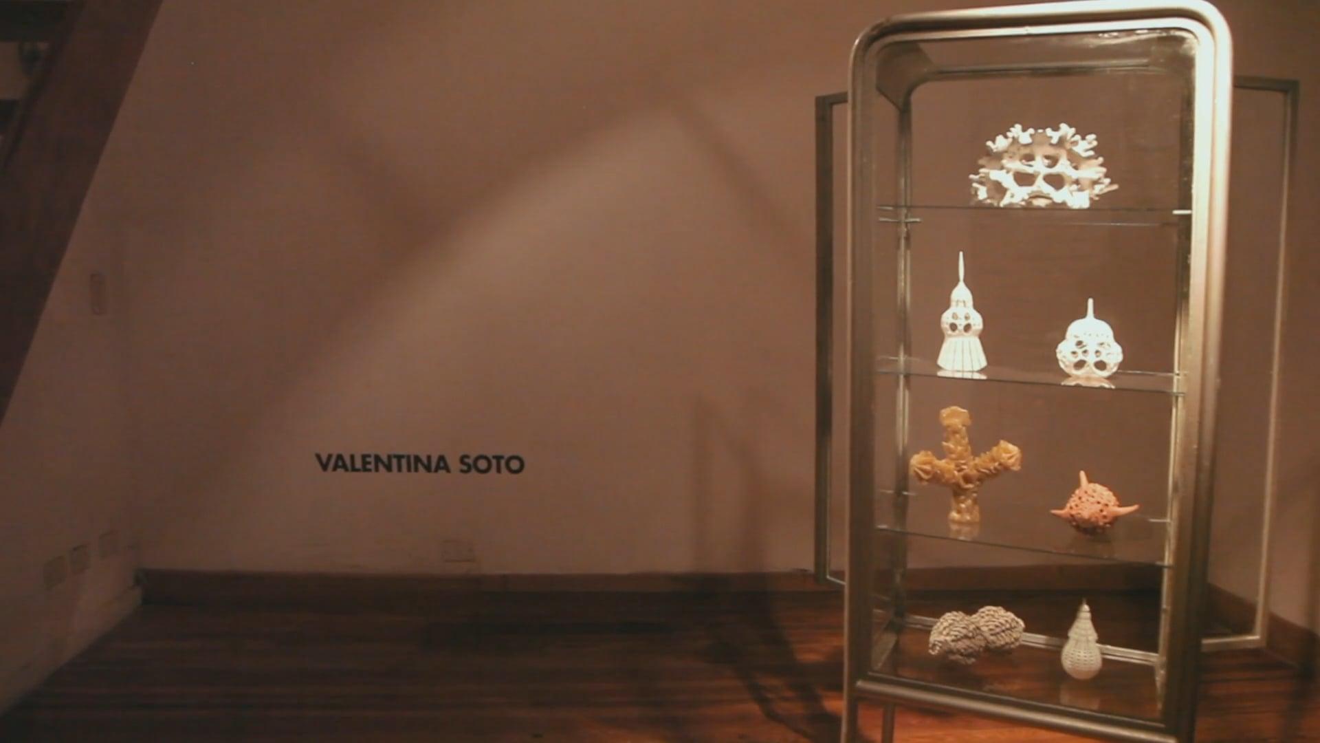 Residencias R.A.R.O. | Valentina Soto