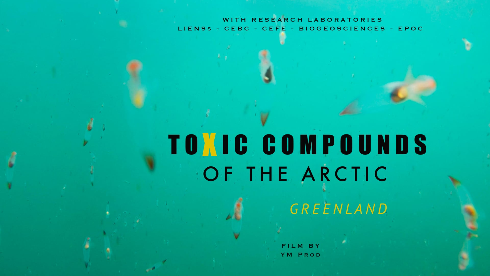 The toxic compounds of the Arctic- Greenland