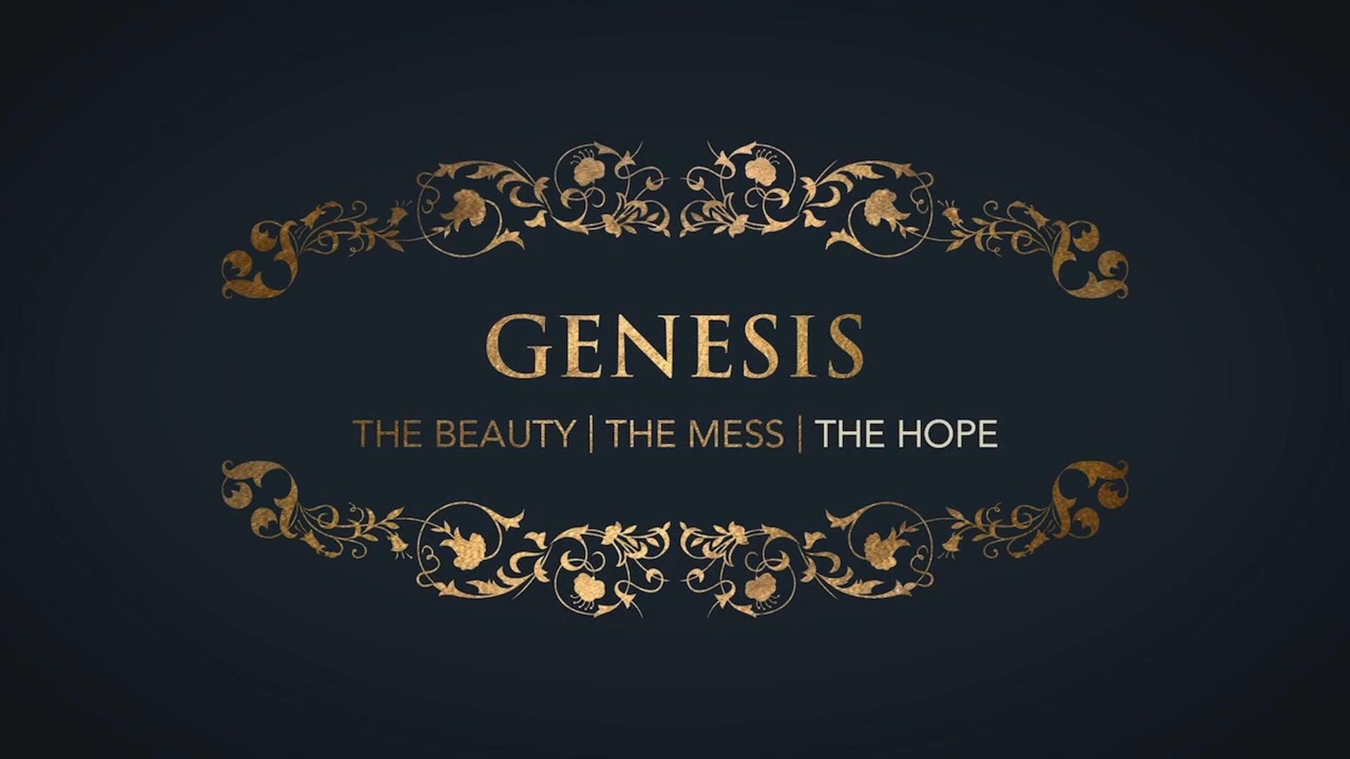 Week 3: Genesis: Hope in the God who Provides
