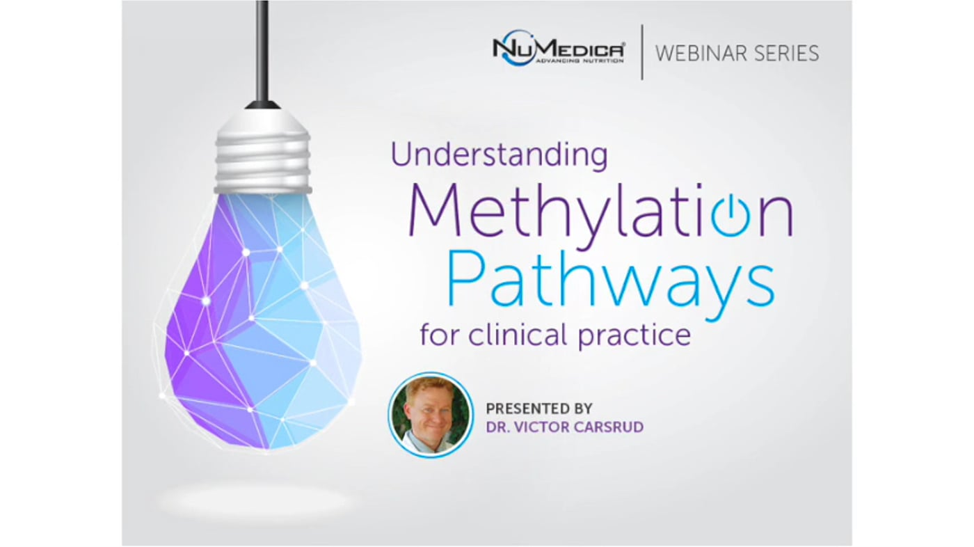 Understanding Methylation Pathways for Clinical Practice