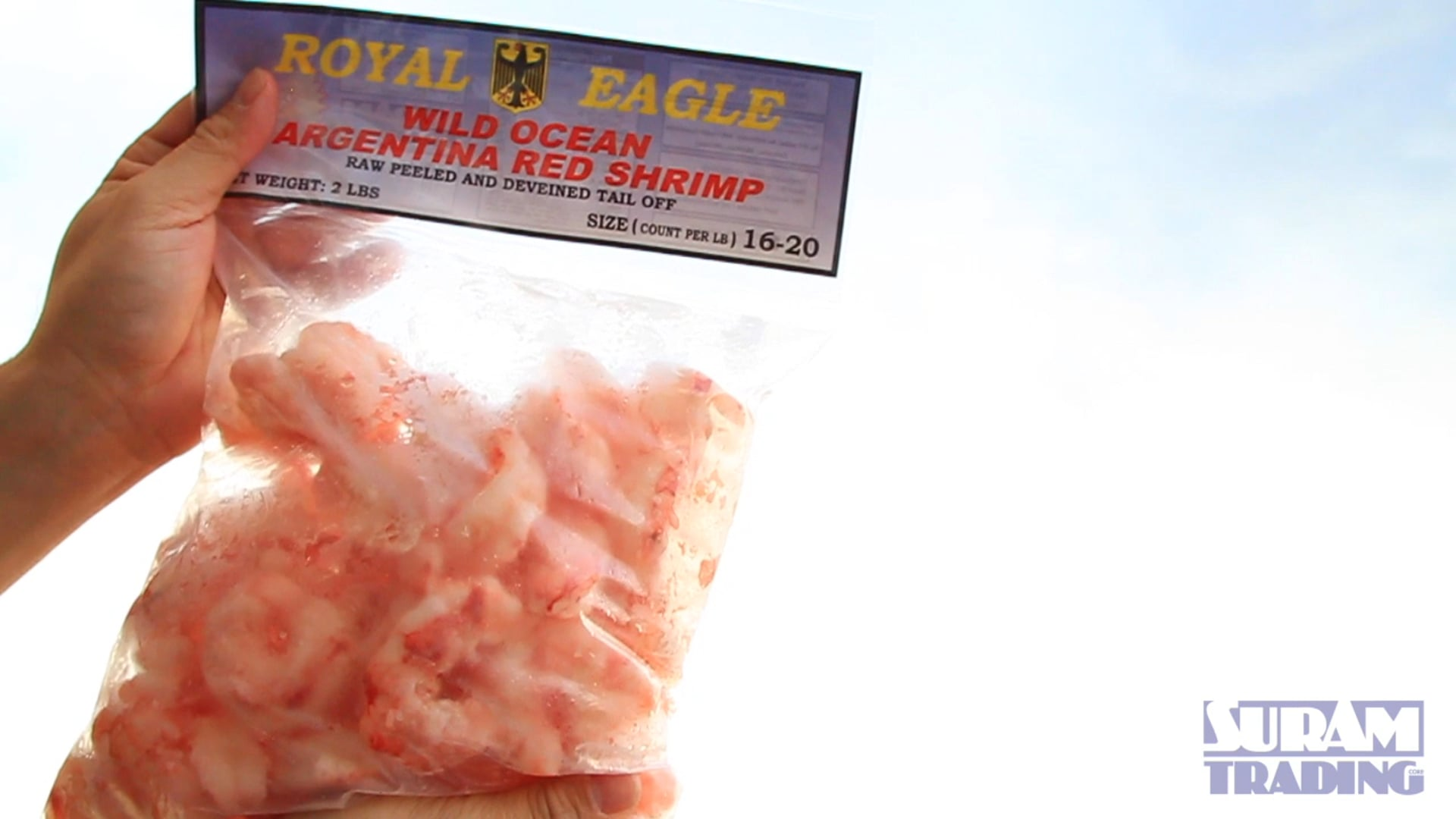 Royal Eagle Shrimp Bag Preview