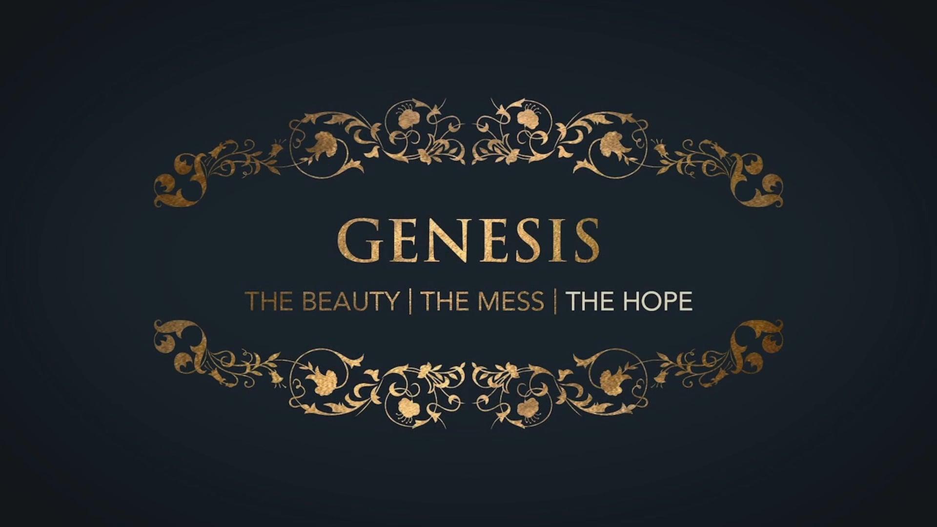 Week 4: Genesis: Hope in the God of Blessing
