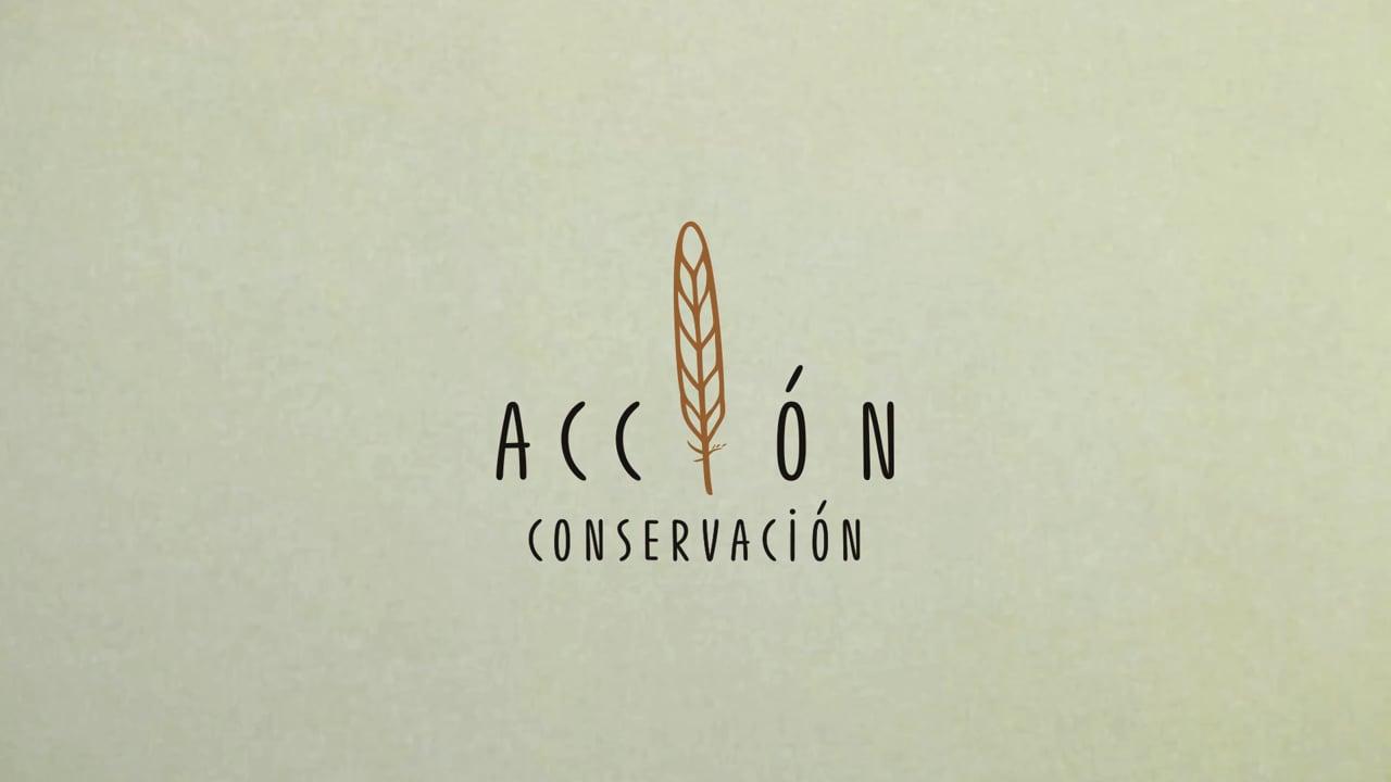 Acción Conservación (2018)
