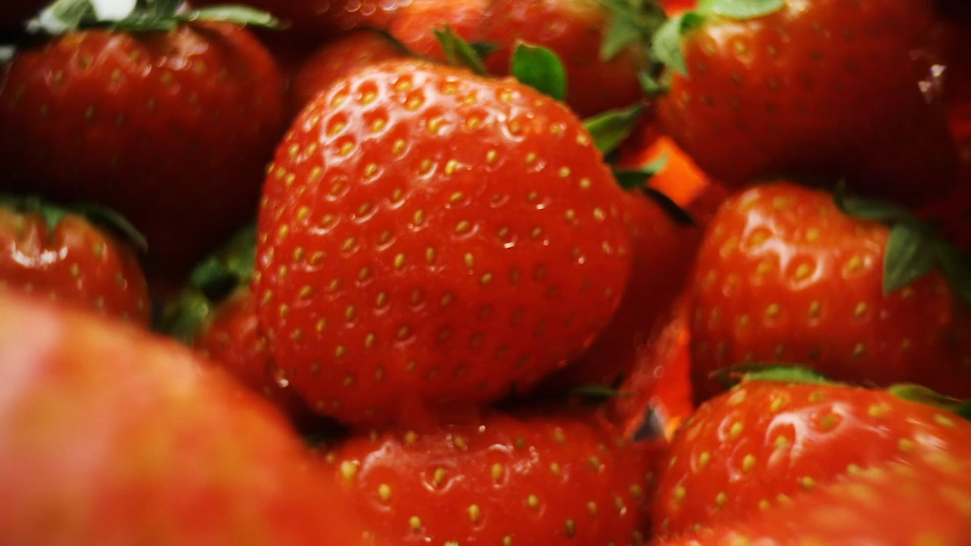 Haagen Dazs fruits travel