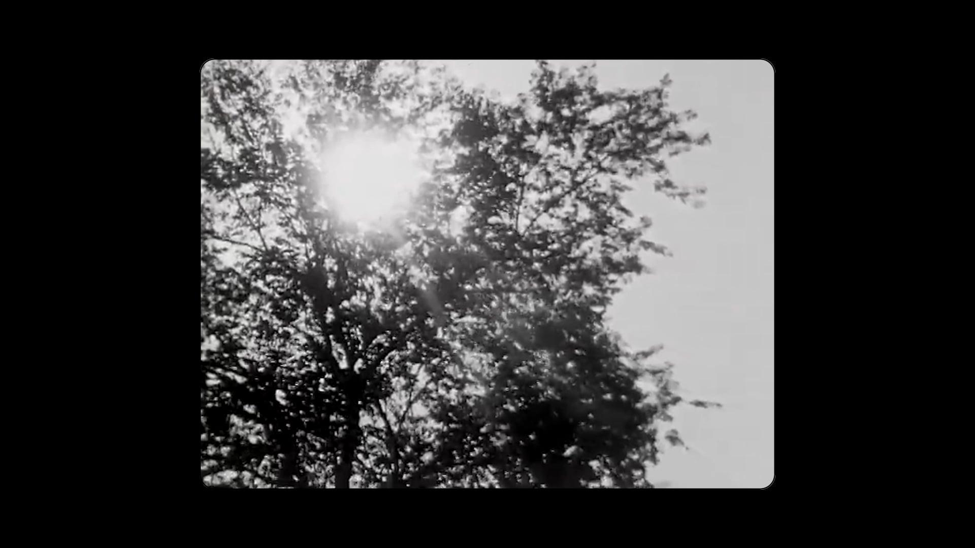 The Other's World   Poem by J Otis Powell   Film by Zachary Thomas Cedarholm