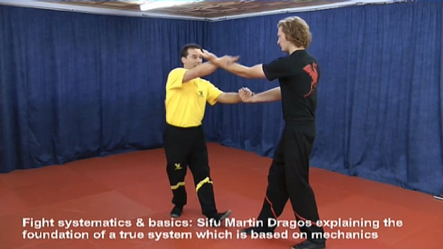 DRAGOS WING TSUN BOOTCAMP RELOADED - Infos & Impressions