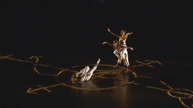 University Dancers: Nexus