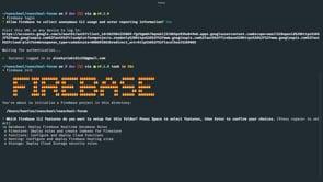 The Firebase Tools (CLI)