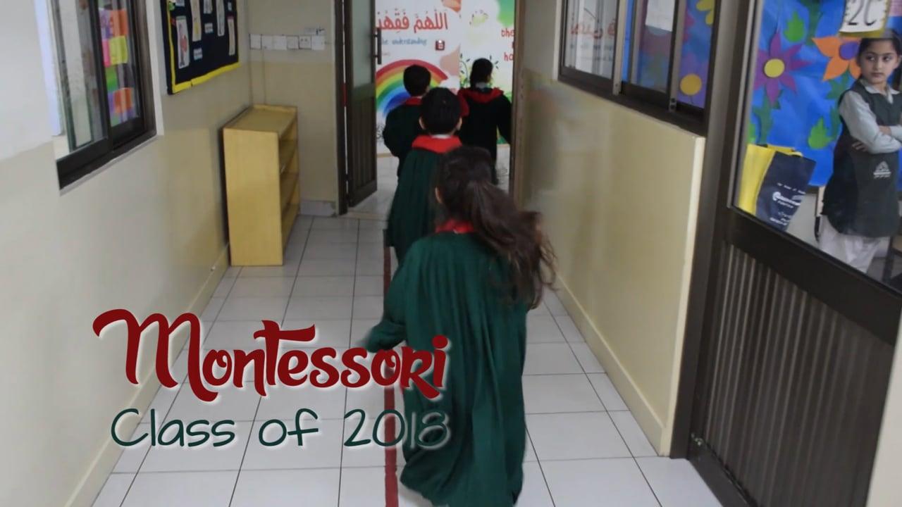 AIS Montessori Class of 2018 (H-11 Campus) - Montage