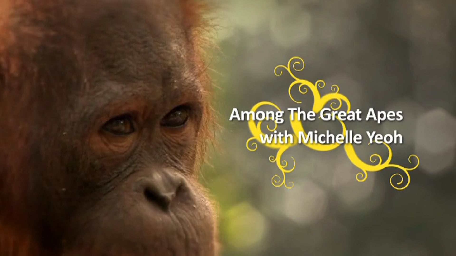 Among The Great Apes with Michelle Yeoh (Trailer)