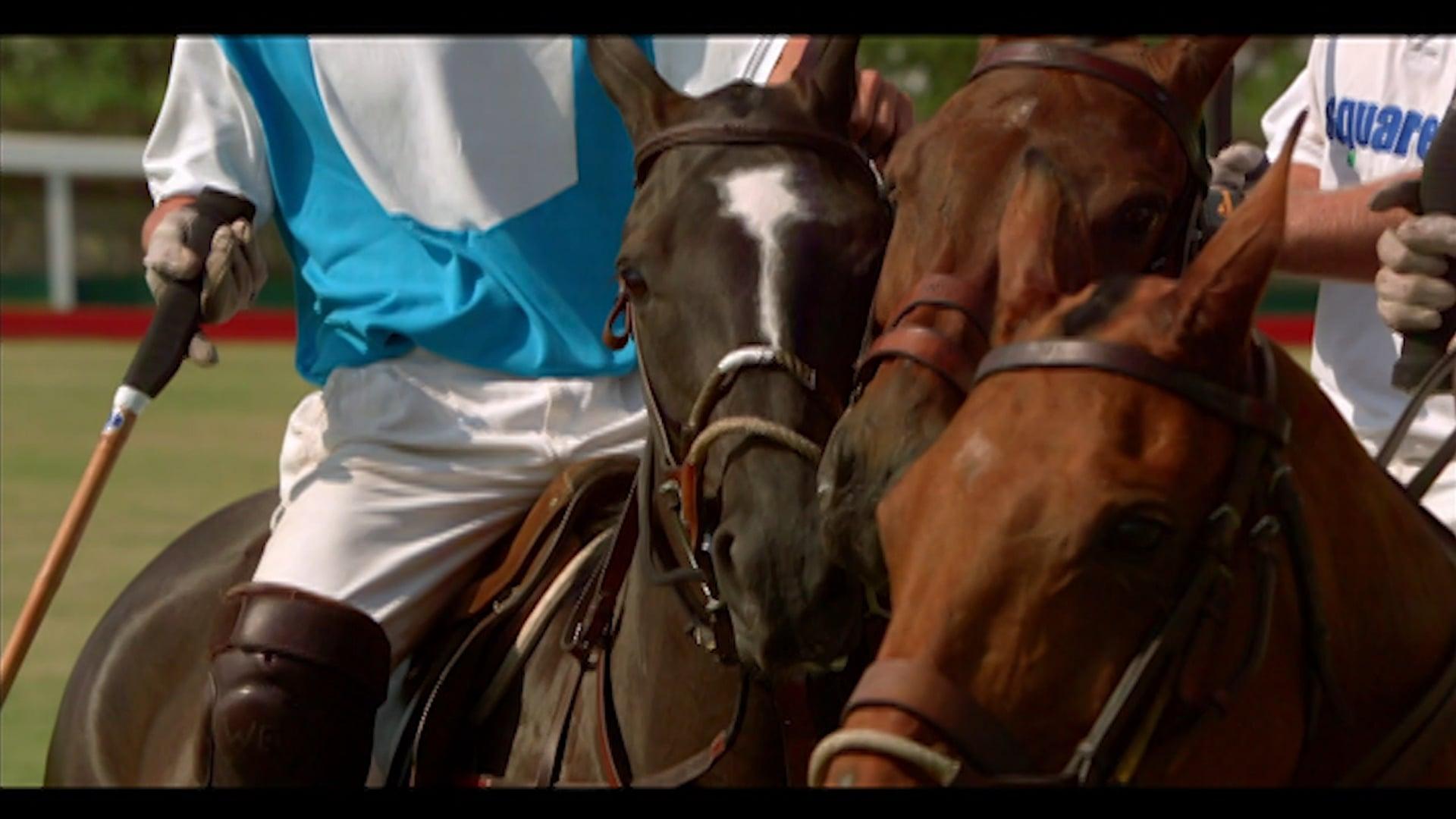 Of Kings & Cowboys Trailer