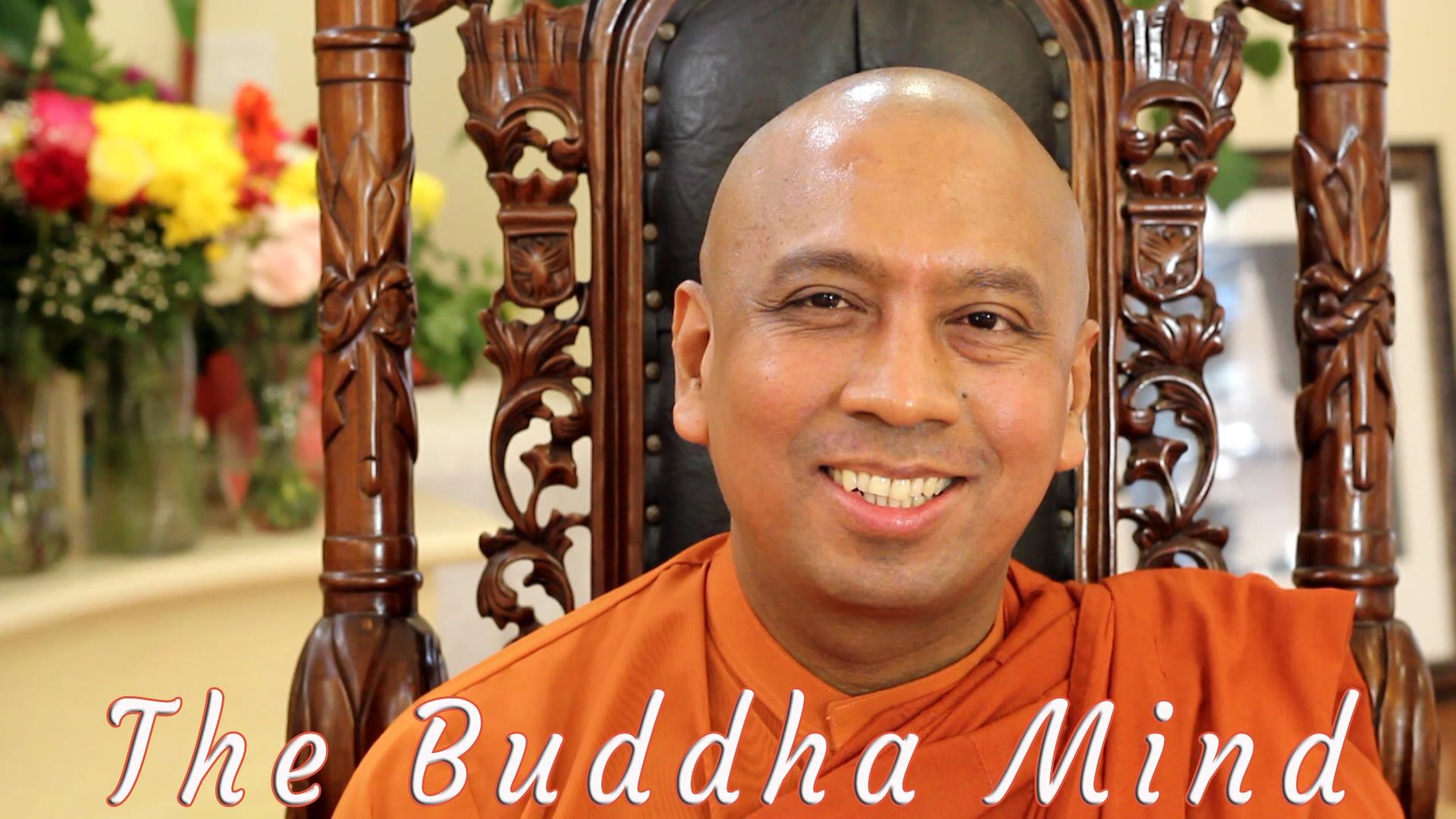 Eye On Life: The Buddha Mind