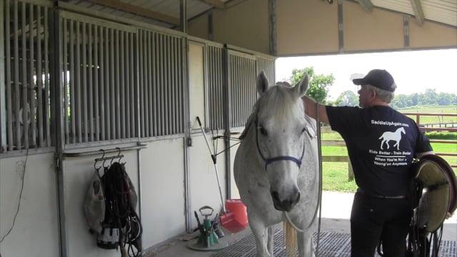 How to Saddle a Horse - SaddleUpAgain.com