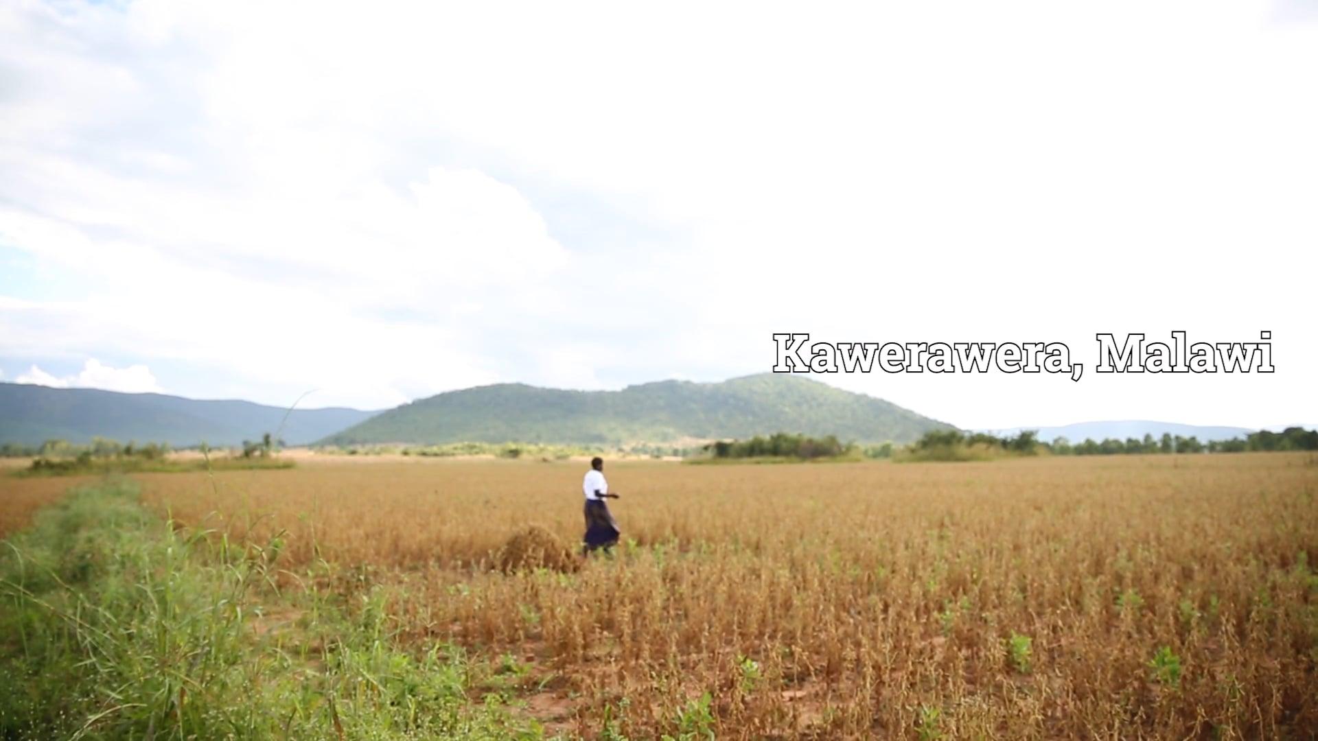 EIF - Malawi Film