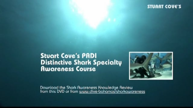 Shark Awareness Course Video with Introduction to Stuart Cove's