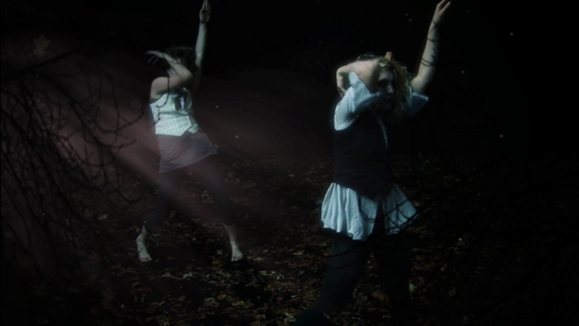 """""""Lichen"""" - A dance film"""