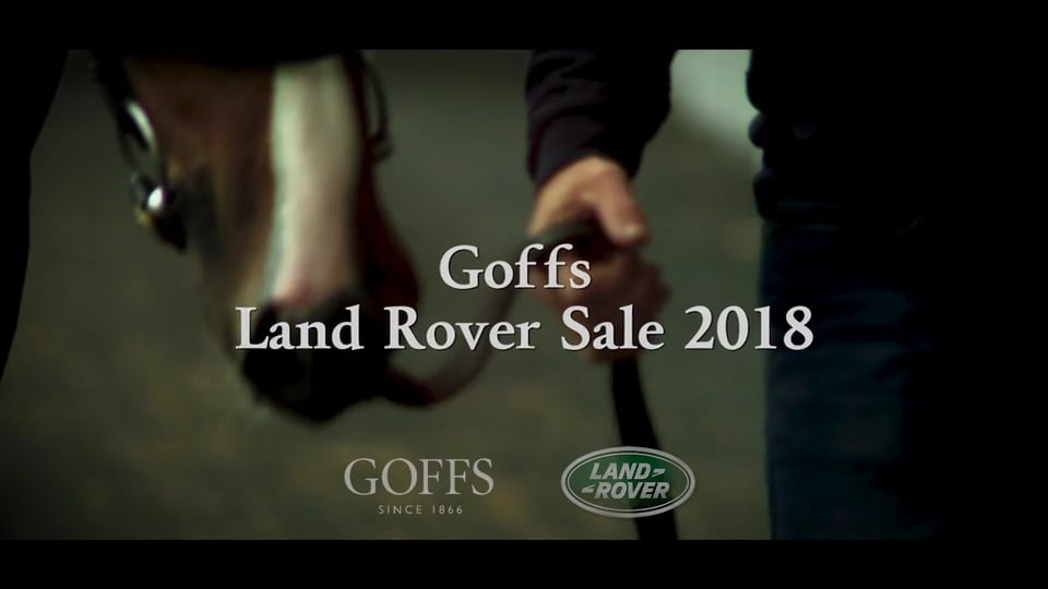 Goffs Land Rover 2018 Review