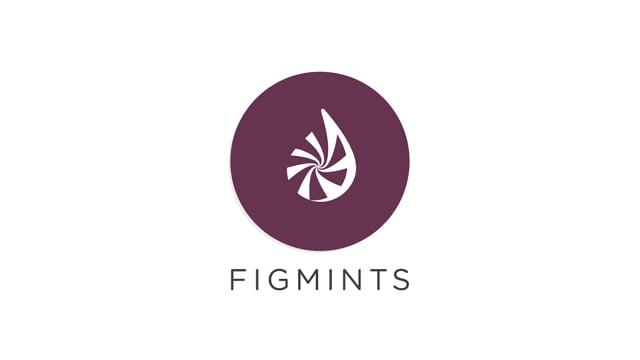 Figmints Digital Creative Marketing - Video - 3