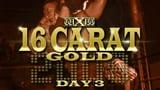wXw 16 Carat Gold 2009 - Night 3