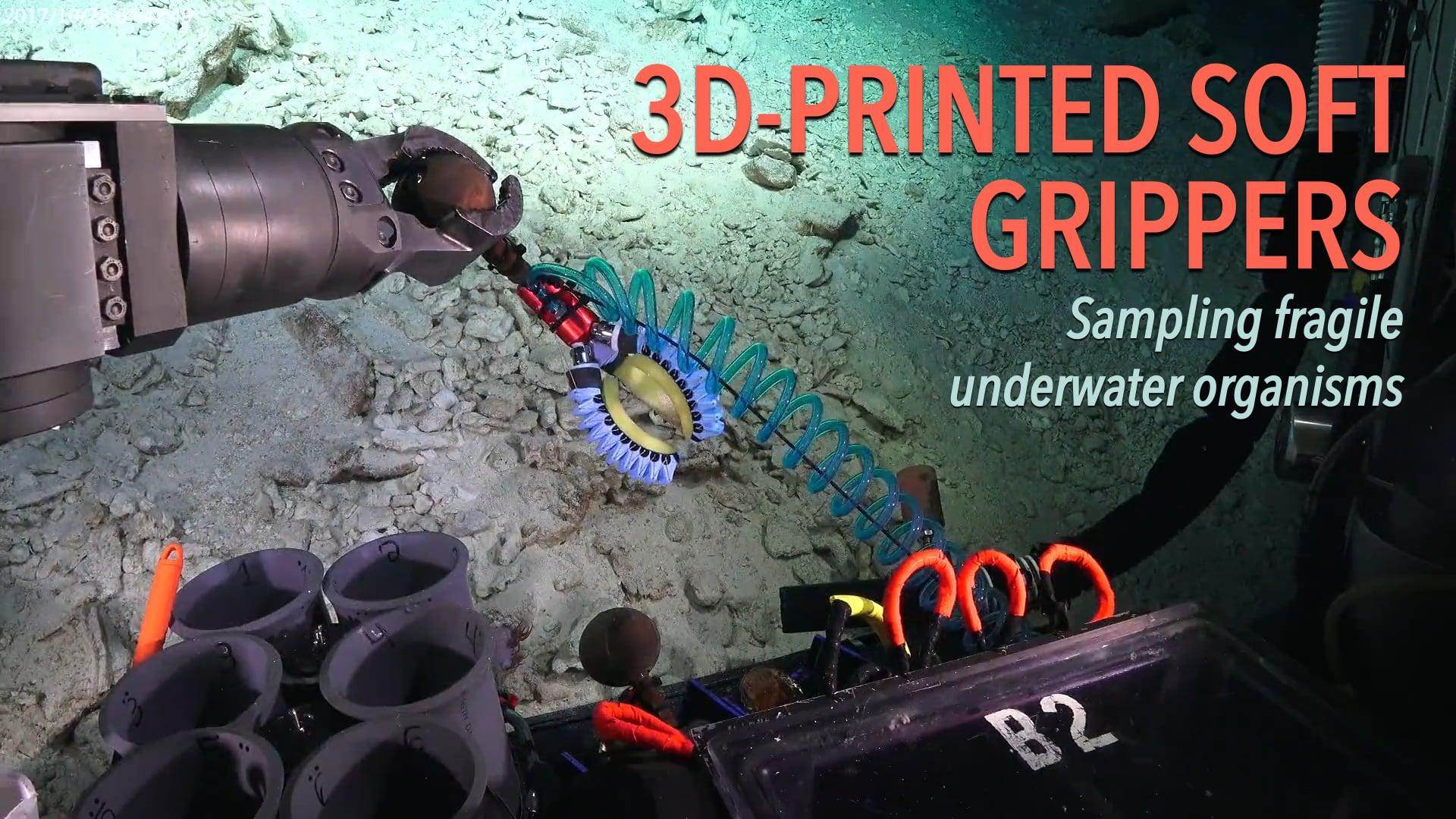 3D-Printed Soft Grippers: Sampling fragile underwater organisms