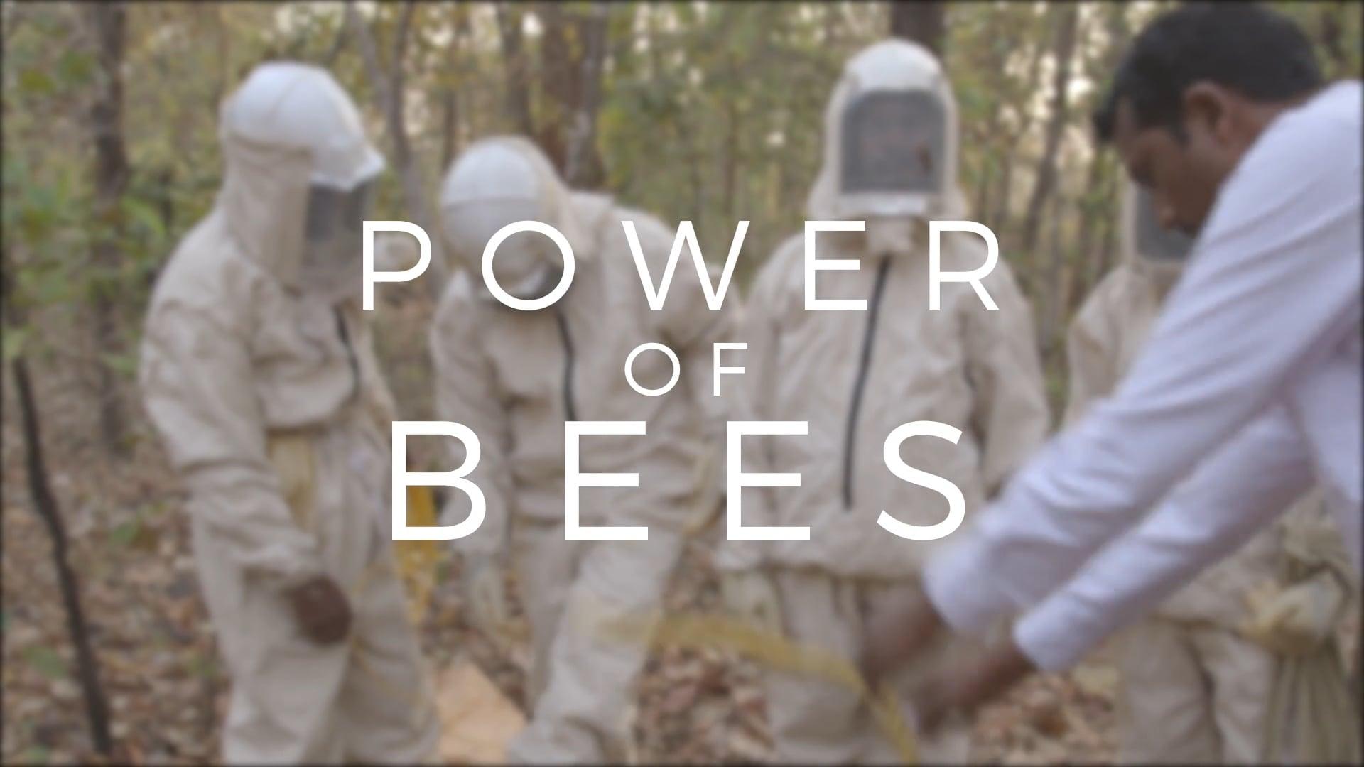Heavenly Organics - Power of Bees