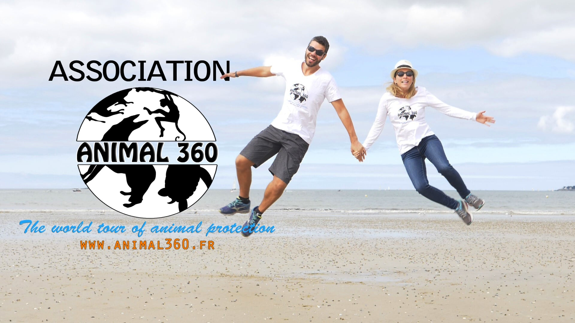 Animal 360 association