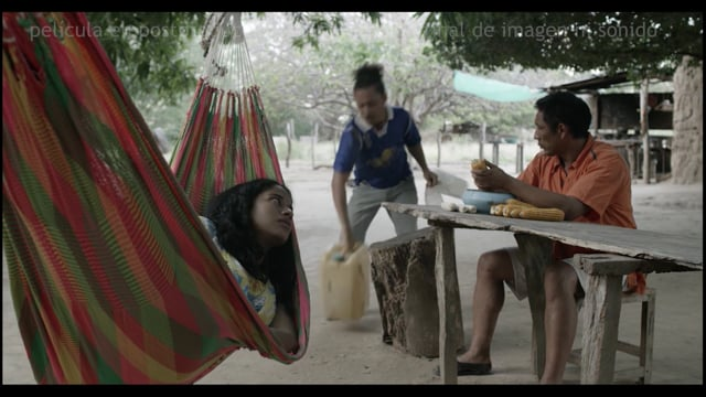Work in Progress Latinoamericano – SANFIC14