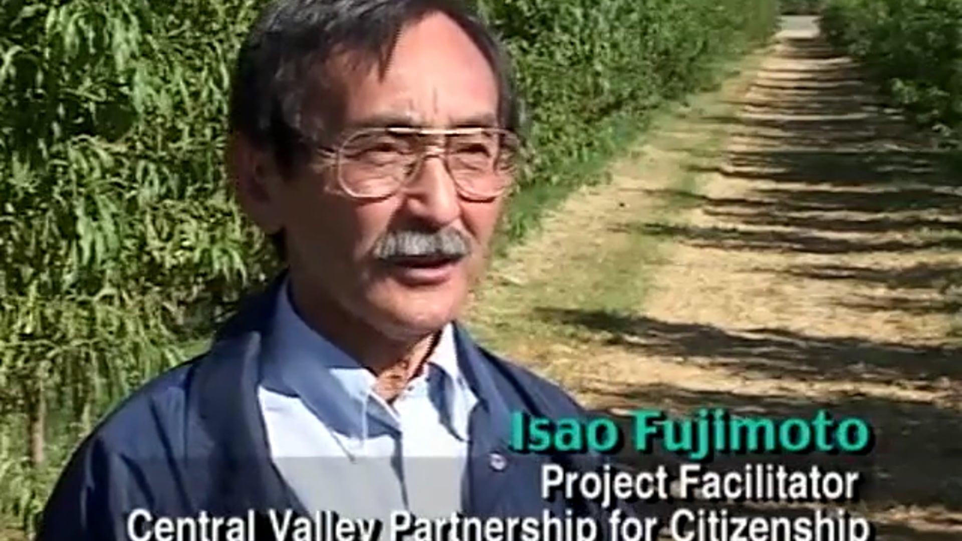 Isao Fujimoto CVP Overview