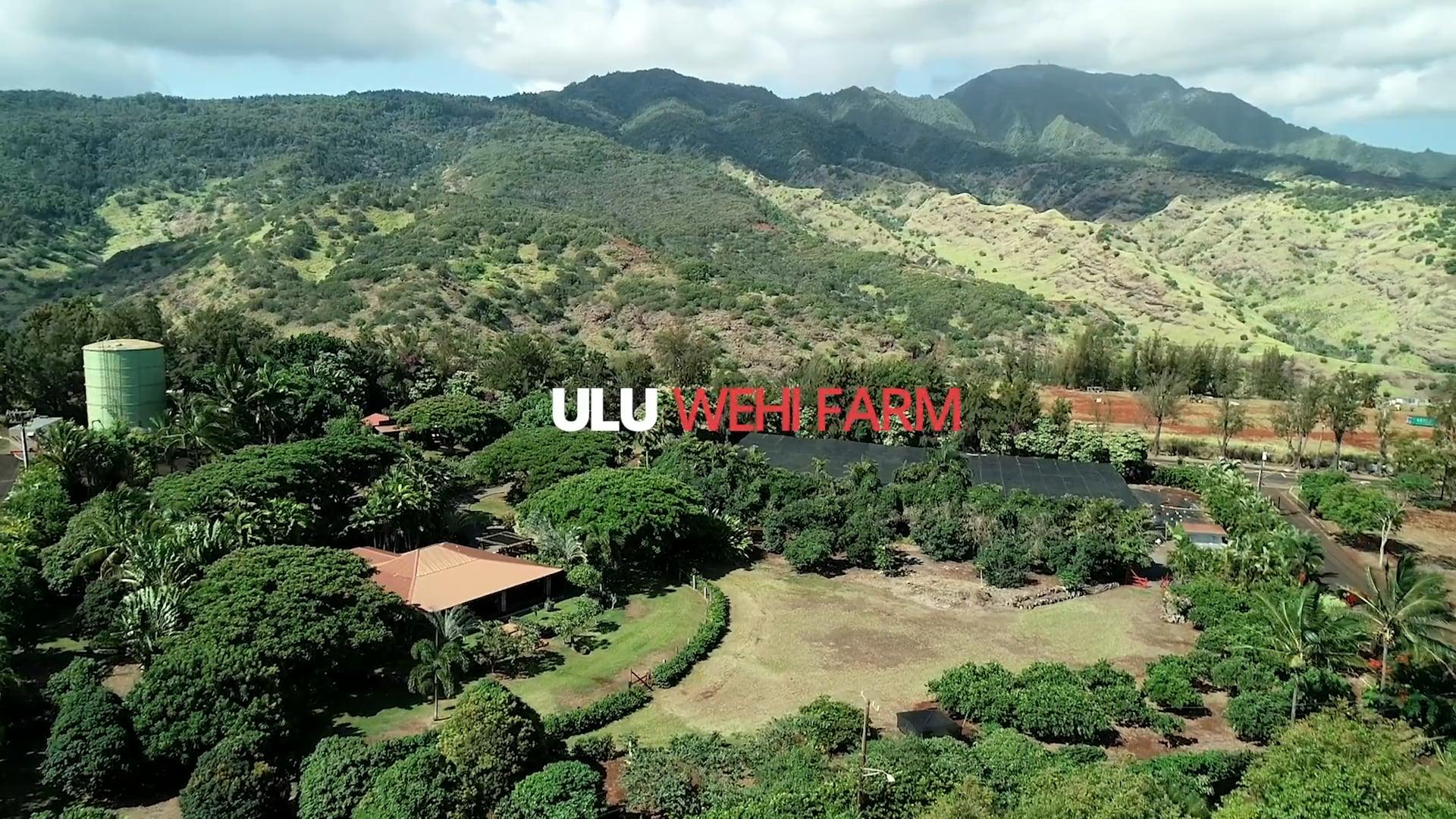 Ulu Wehi Farm - Coldwell Banker Pacific Properties