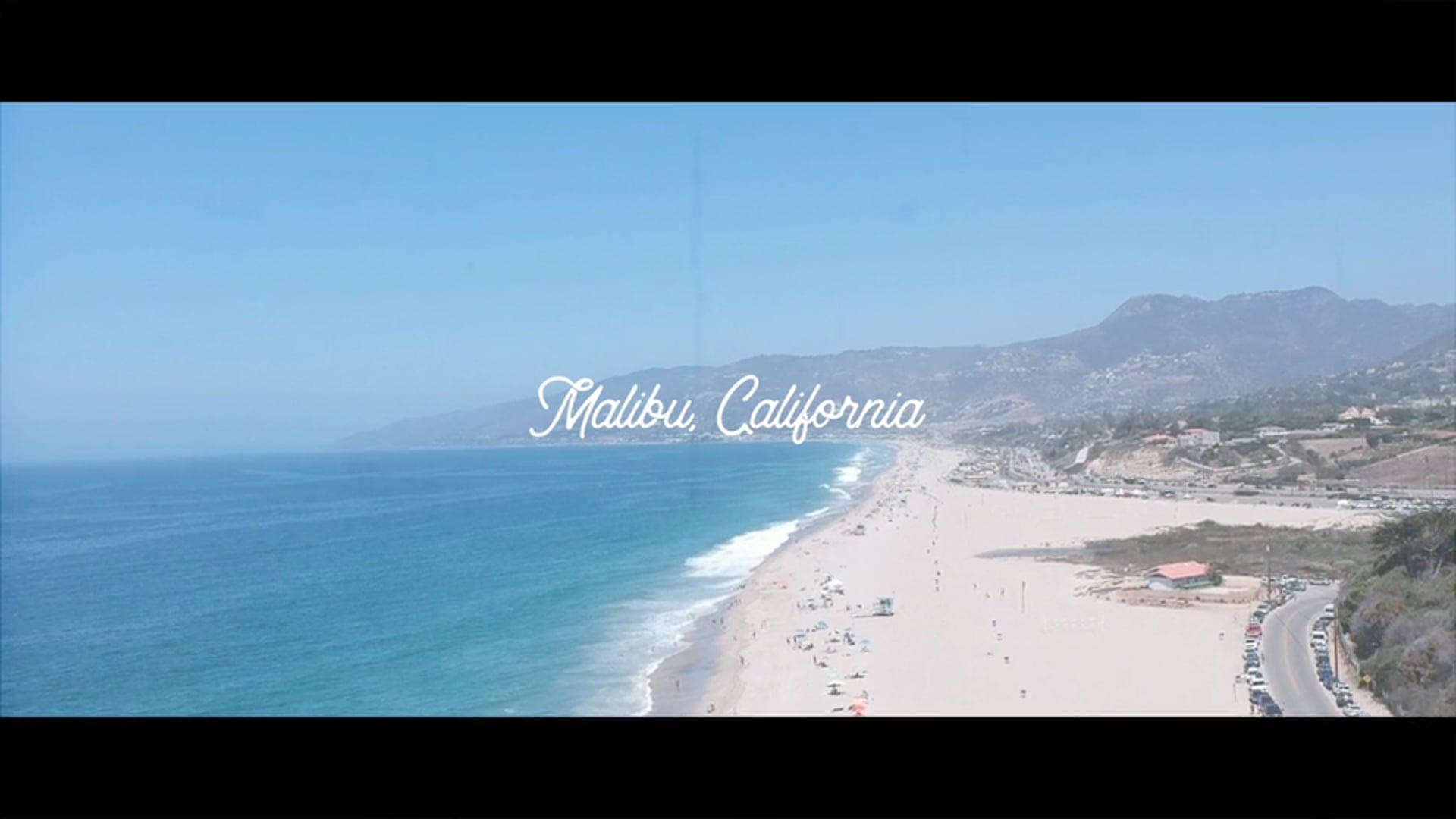 Allan + Sara || Malibu, CA Wedding Highlights