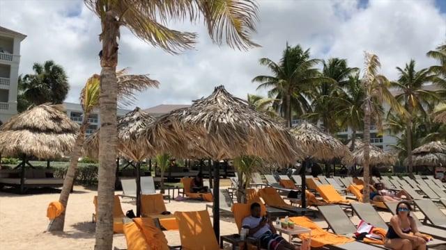 33915LINX SVP Trip 2018: Jamaica