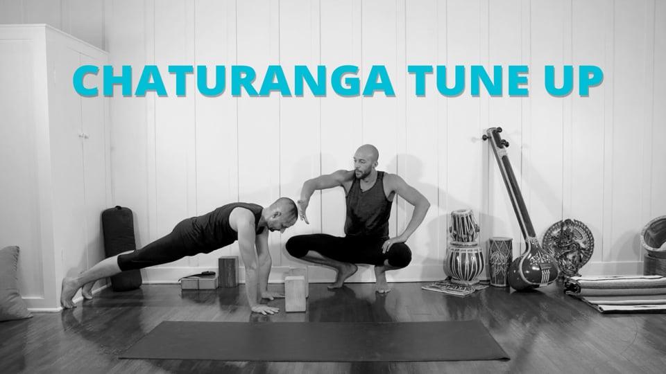 Chaturanga Tune-Up