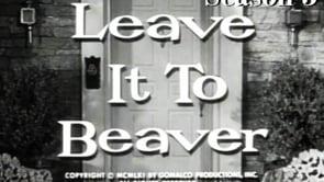 Leave It to Beaver: Stocks and Bonds thumbnail