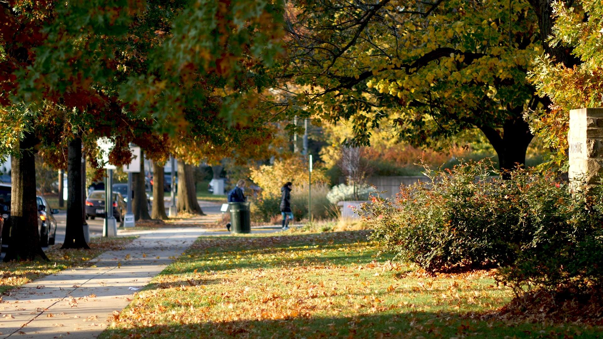 Arboretum & Garden Trailer