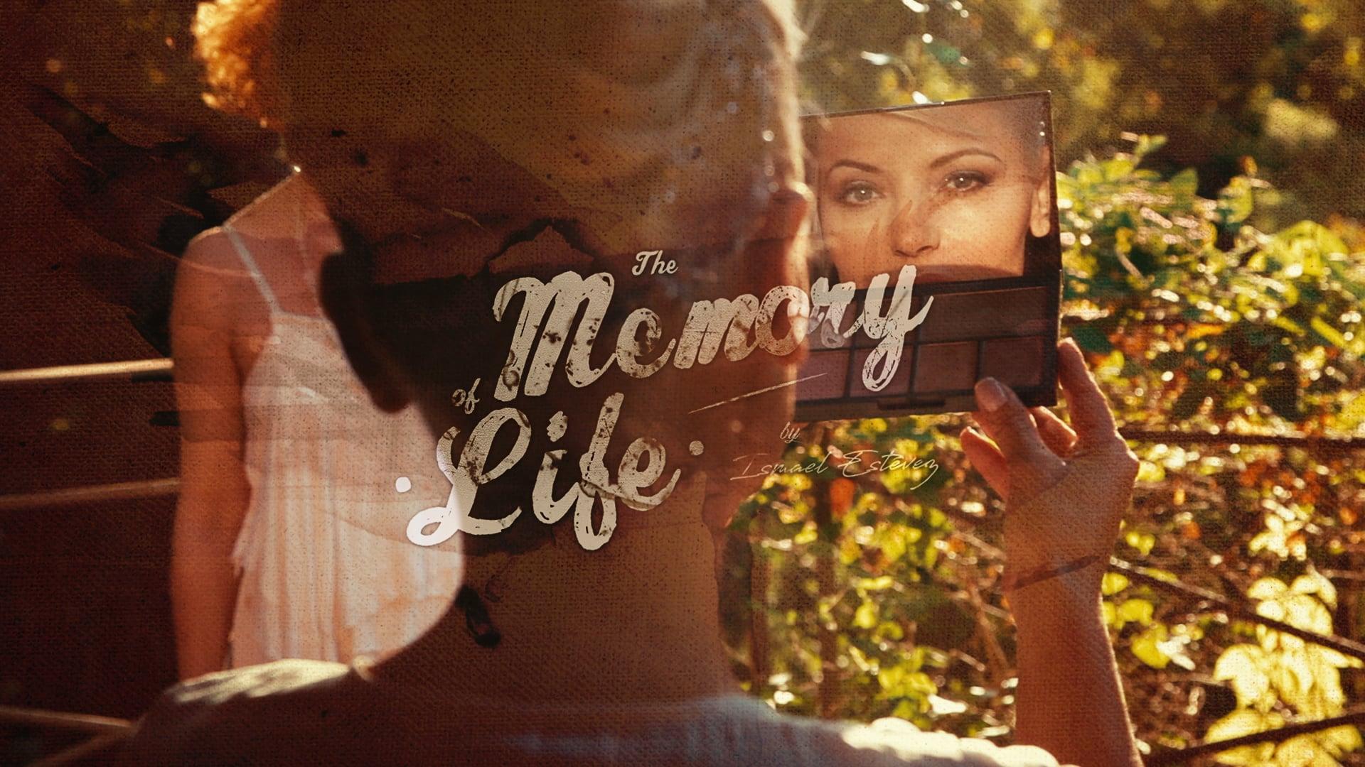 The Memory of Life by Ismael Estévez