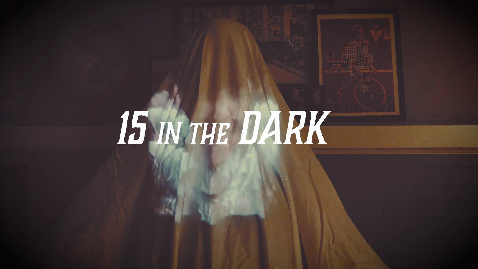 15 in the Dark logo